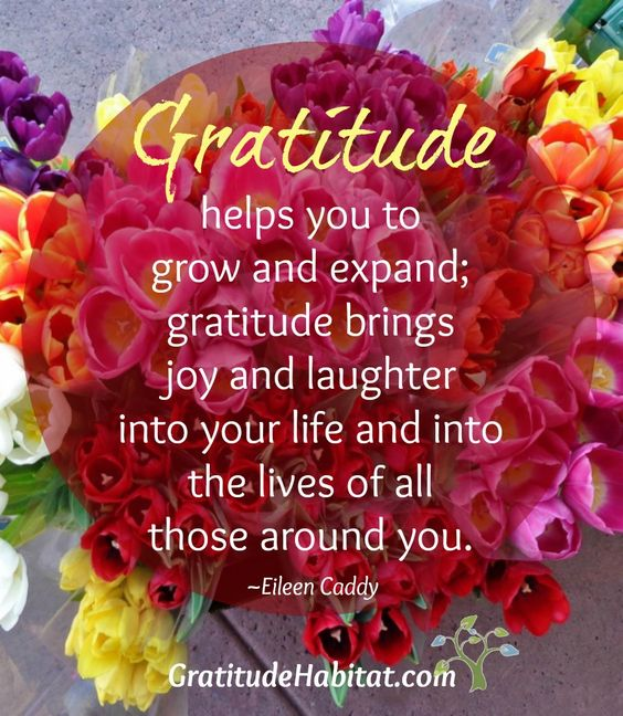 Gratitude helps you grow and expand! QUOTE